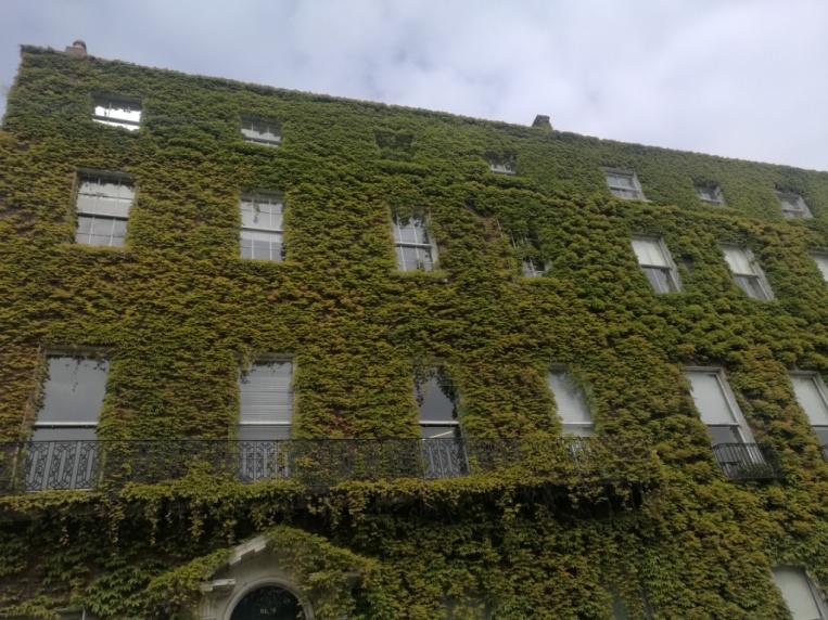 uno de los edificios frente a St. Stephen's green